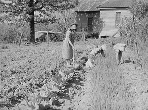 Mrs Lemuel Smith and children working in the garden